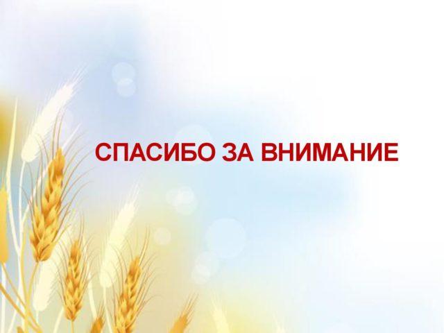Хлеб 16