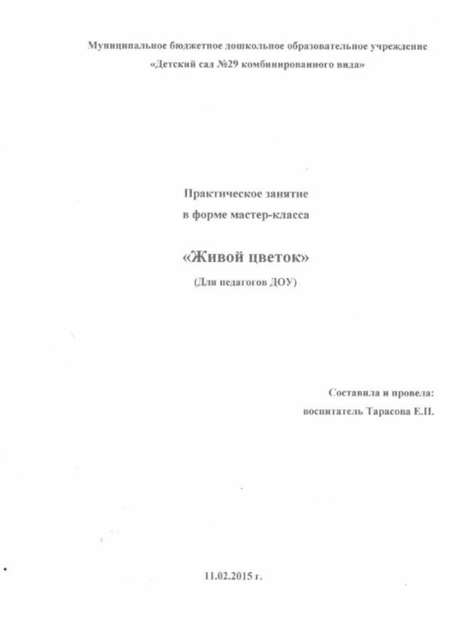Мастер-класс Хризантема 1