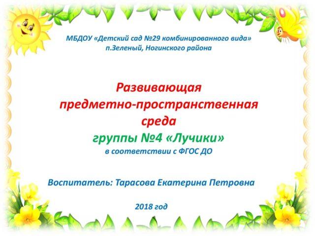 РППС Лучики 1