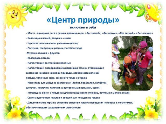 РППС Лучики 9